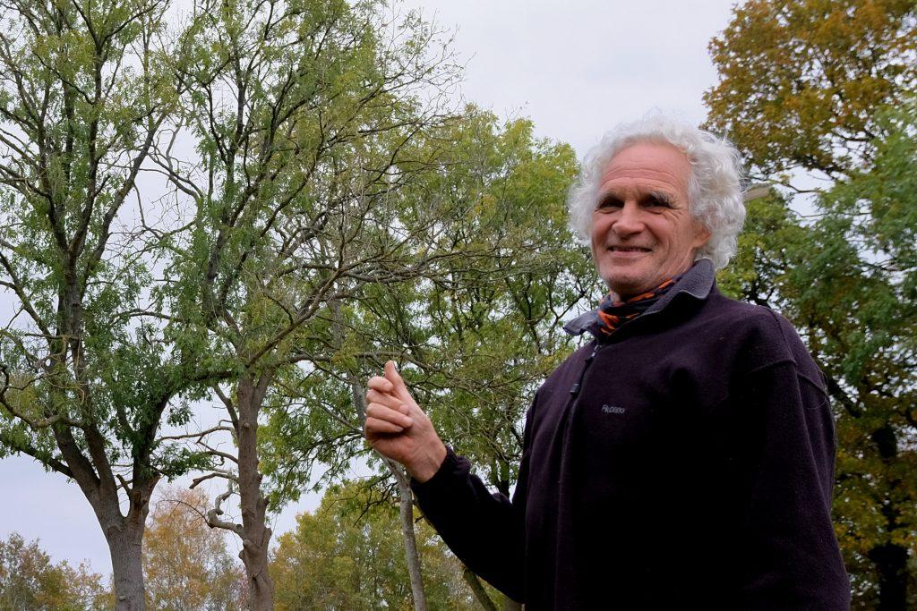 'Boomziektes, schimmels en plaagdieren belagen vele inheemse boomsoorten', zegt bomendokter Rinck Zevenberg uit Wedde zegt in een interview met Jan Johan ten Have, dat in november 2019 werd gepubliceerd in het Westerwolde Lougblad.